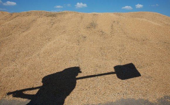 зерновая биржа: на ней